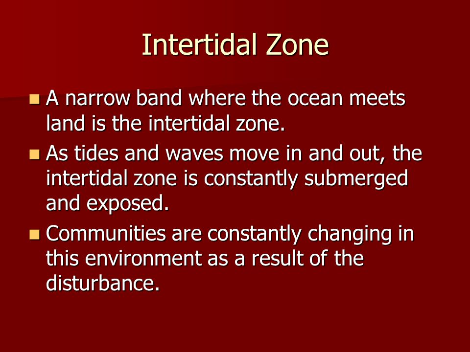 Intertidal Zone A narrow band where the ocean meets land is the intertidal zone.
