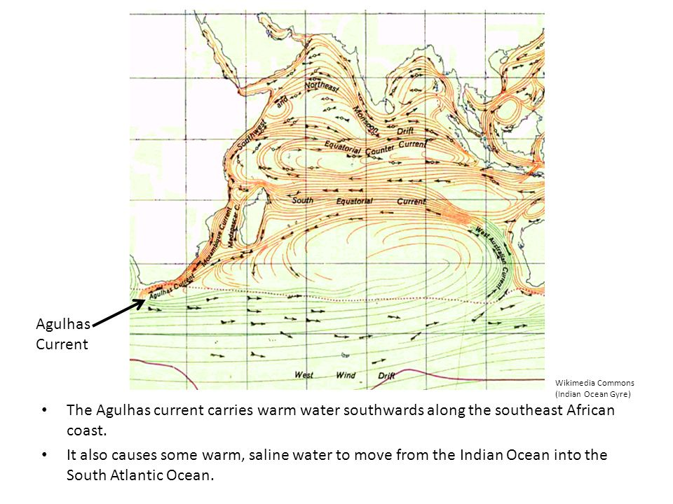 Agulhas Current. Wikimedia Commons. (Indian Ocean Gyre) The Agulhas current carries warm water southwards along the southeast African coast.