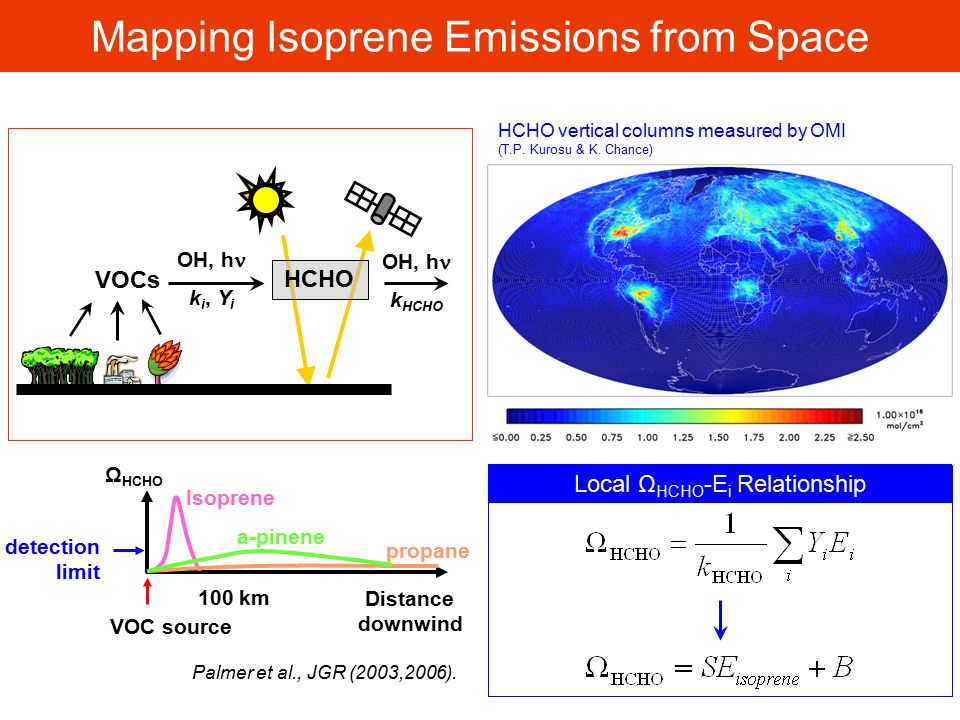 Mapping Isoprene Emissions from Space