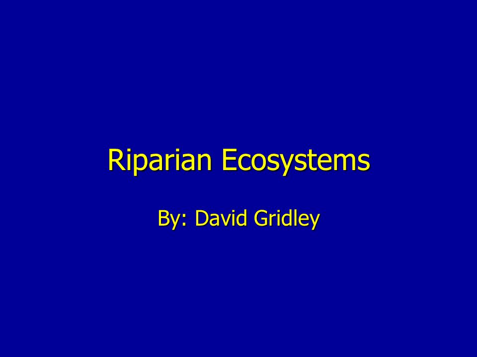 Riparian Ecosystems By: David Gridley