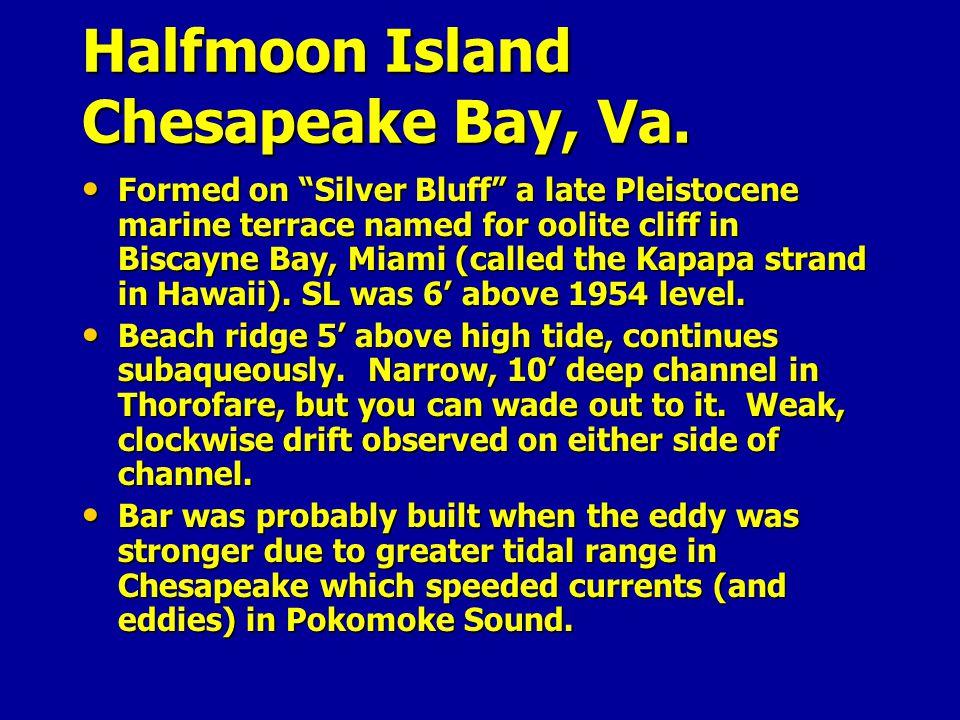 Halfmoon Island Chesapeake Bay, Va.