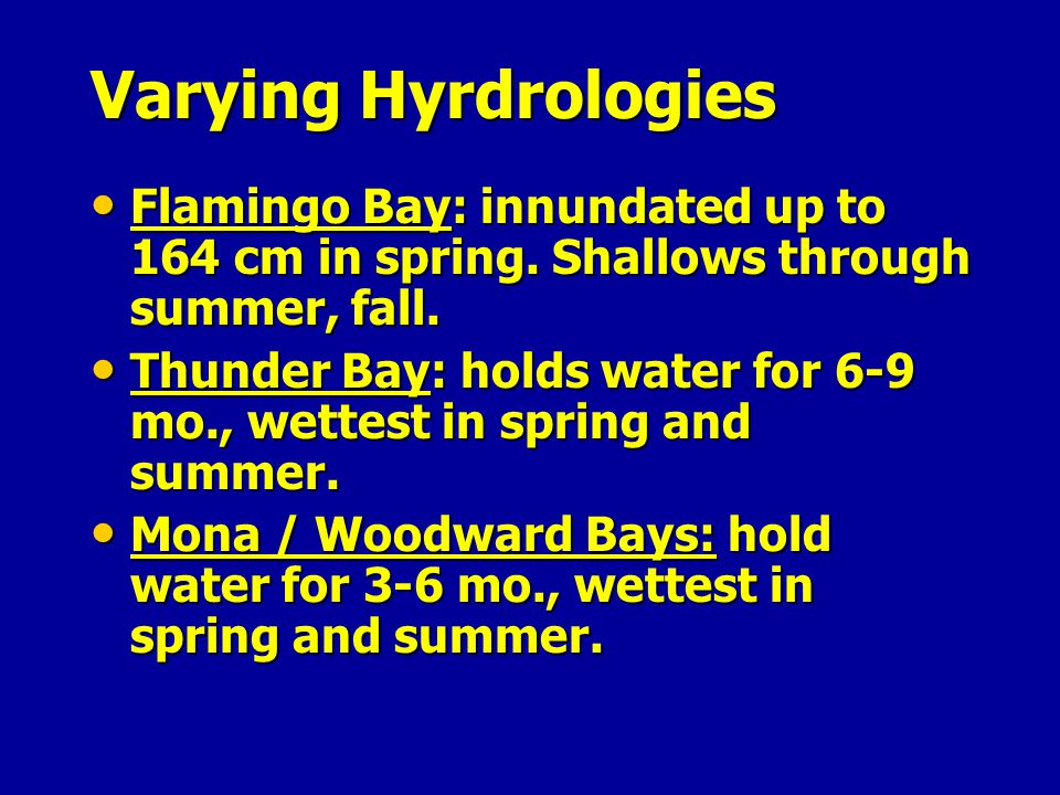 Varying Hyrdrologies Flamingo Bay: innundated up to 164 cm in spring. Shallows through summer, fall.