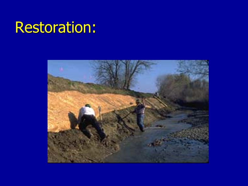 Restoration: