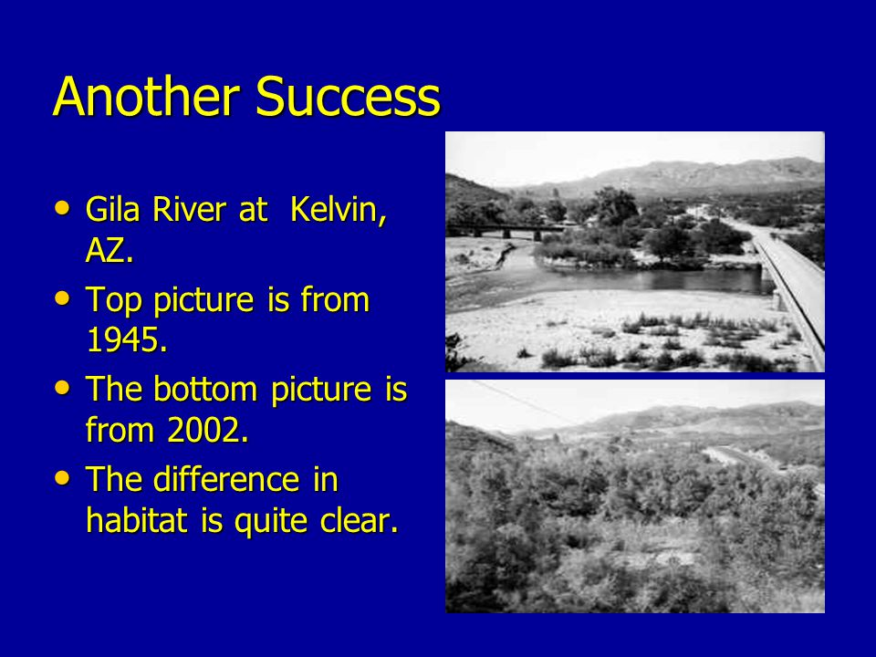 Another Success Gila River at Kelvin, AZ. Top picture is from 1945.