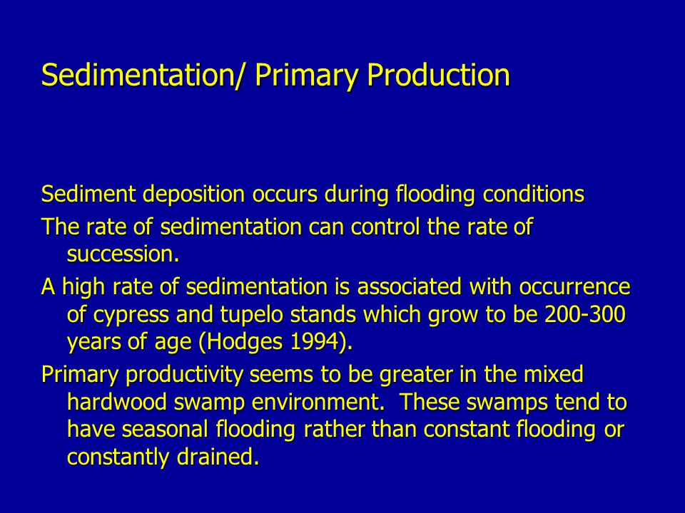 Sedimentation/ Primary Production