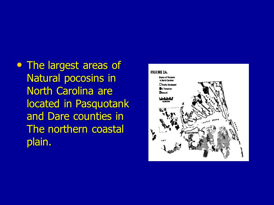 The largest areas of Natural pocosins in North Carolina are located in Pasquotank and Dare counties in The northern coastal plain.