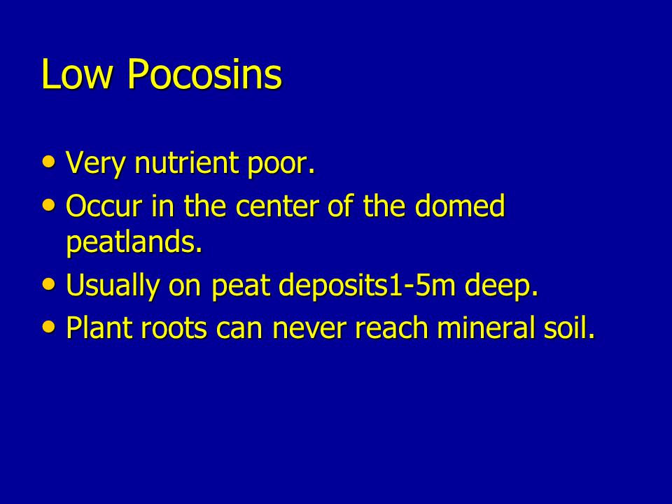Low Pocosins Very nutrient poor.