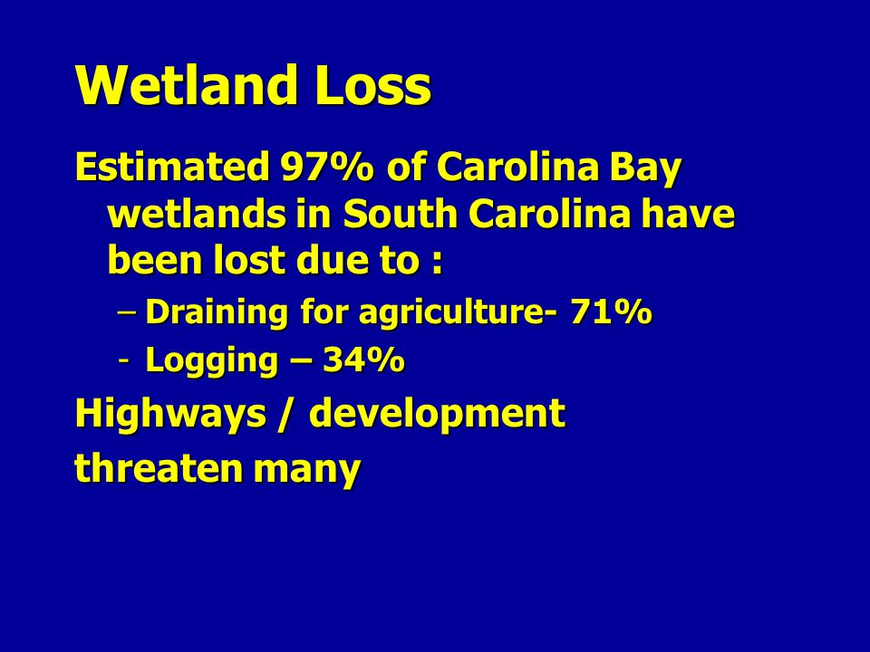 Wetland Loss Estimated 97% of Carolina Bay wetlands in South Carolina have been lost due to : Draining for agriculture- 71%