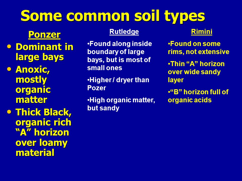 Some common soil types Ponzer Dominant in large bays