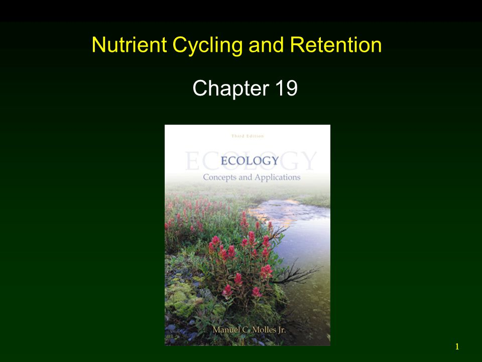 Nutrient Cycling and Retention