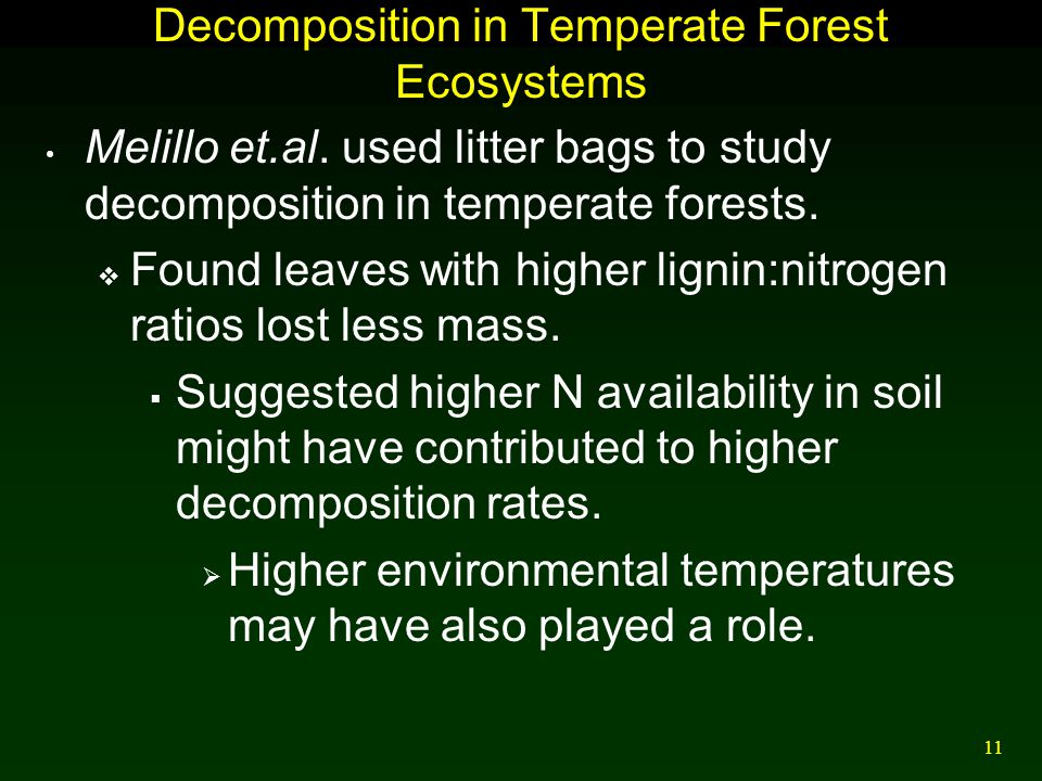 Decomposition in Temperate Forest Ecosystems