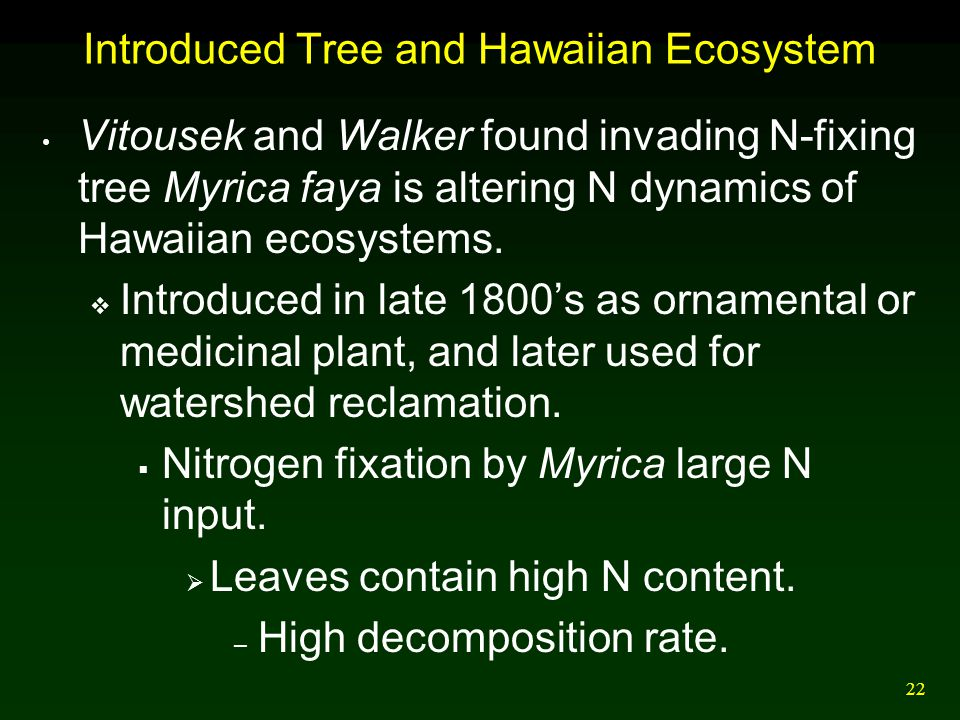 Introduced Tree and Hawaiian Ecosystem