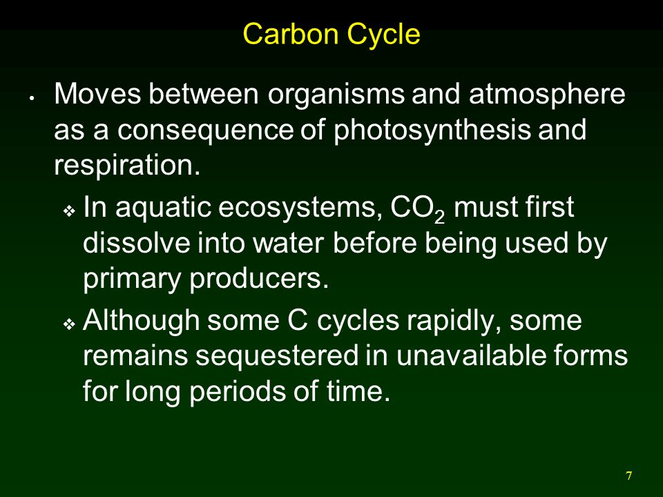 Carbon Cycle Moves between organisms and atmosphere as a consequence of photosynthesis and respiration.