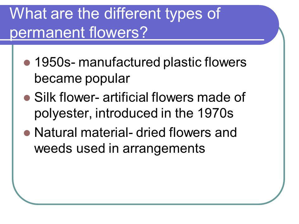 What are the different types of permanent flowers