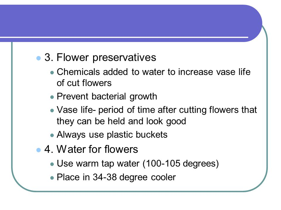 3. Flower preservatives 4. Water for flowers