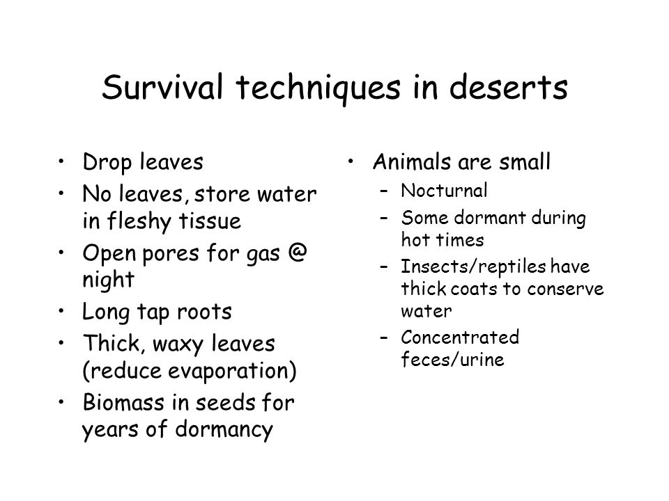 Survival techniques in deserts