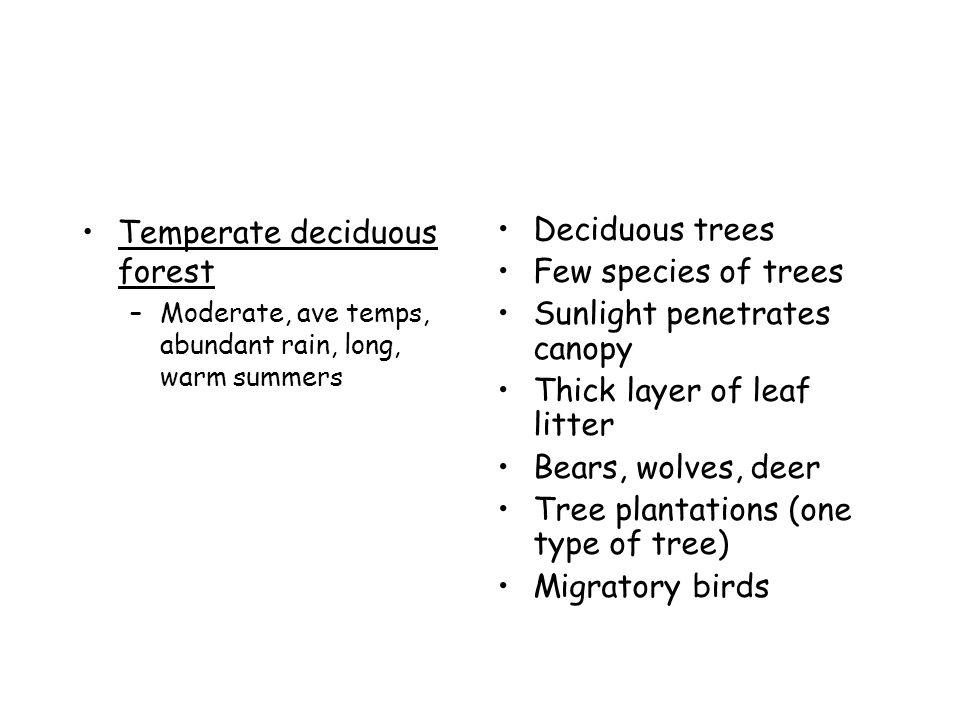 Temperate deciduous forest Deciduous trees Few species of trees