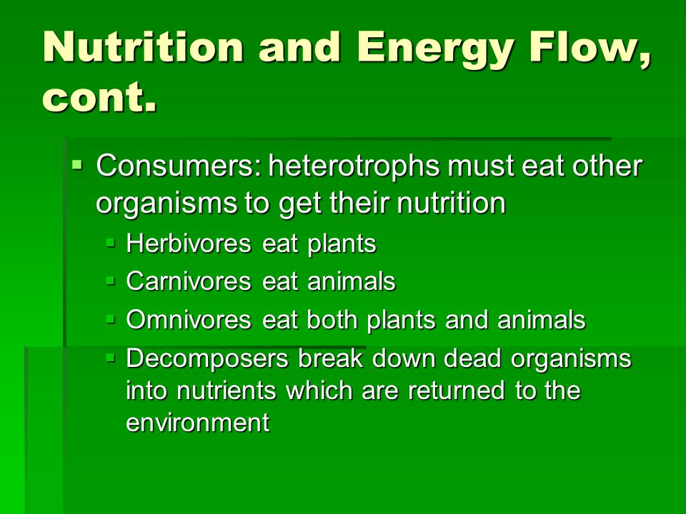 Nutrition and Energy Flow, cont.