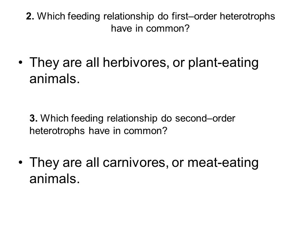 They are all herbivores, or plant-eating animals.
