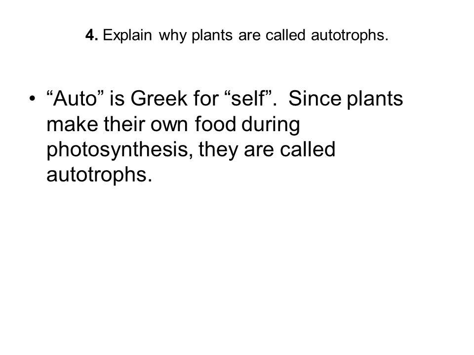 4. Explain why plants are called autotrophs.