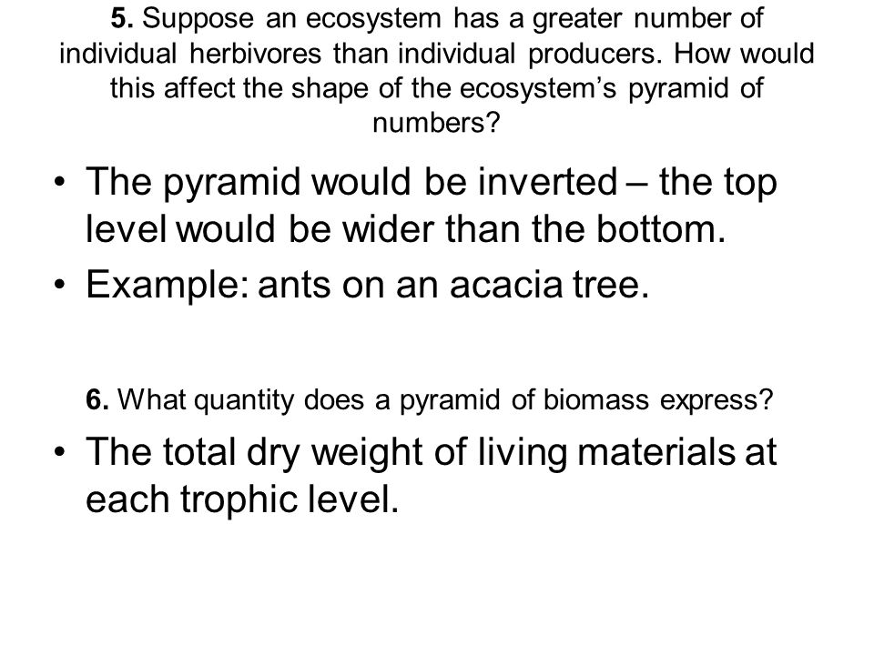 Example: ants on an acacia tree.
