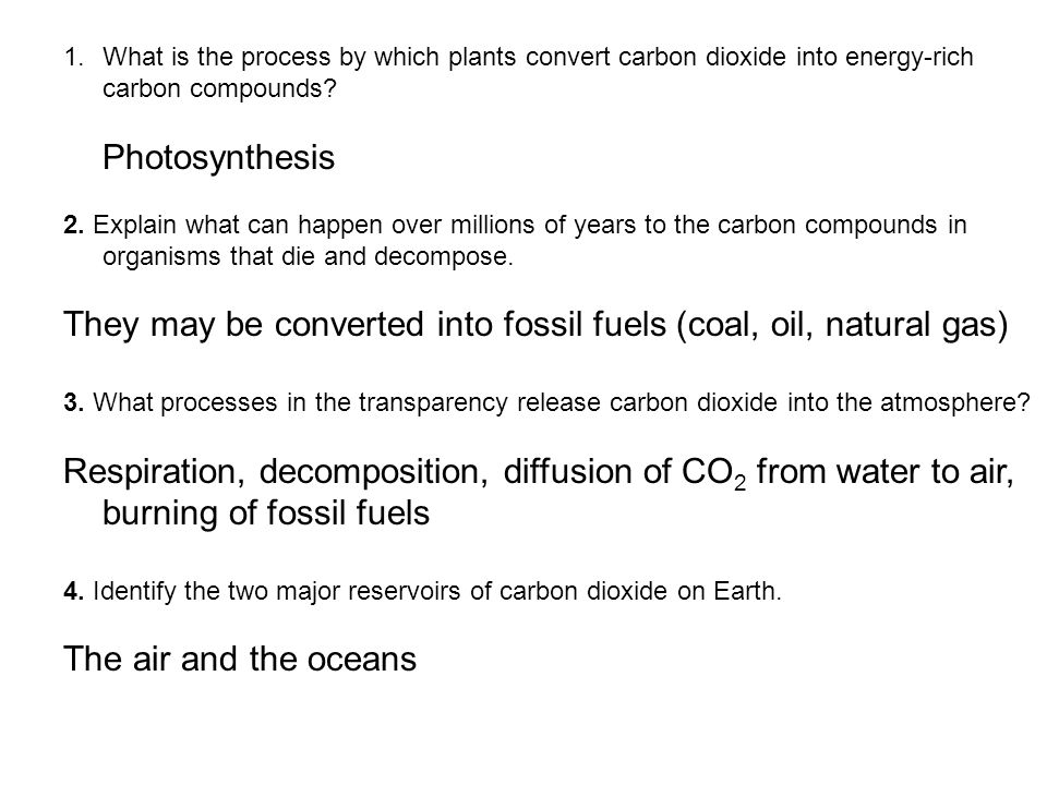 They may be converted into fossil fuels (coal, oil, natural gas)