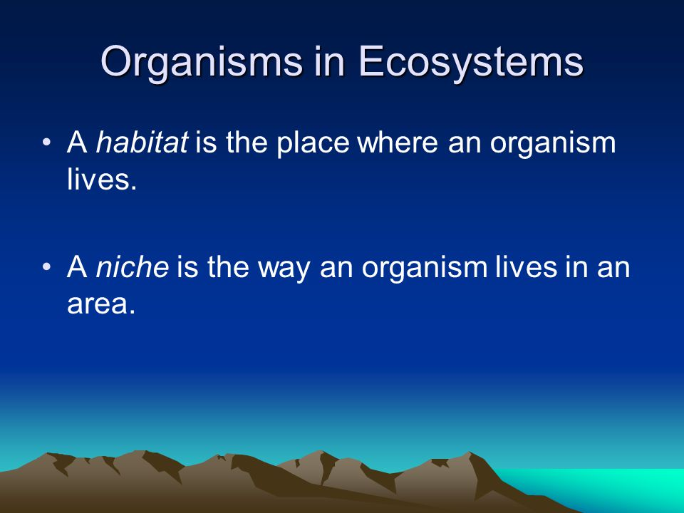 Organisms in Ecosystems