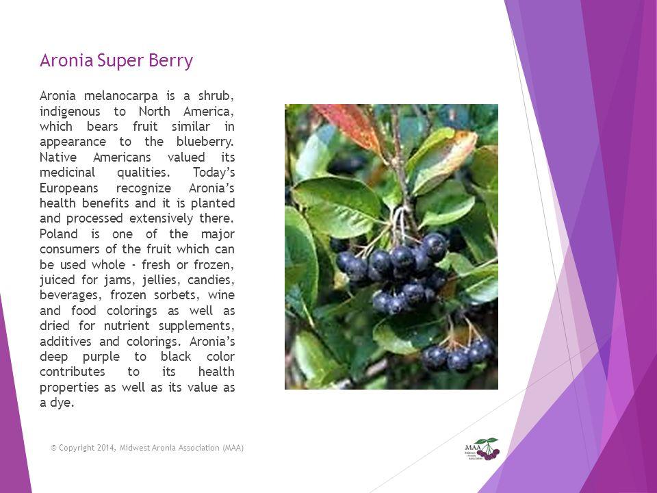 Aronia Super Berry