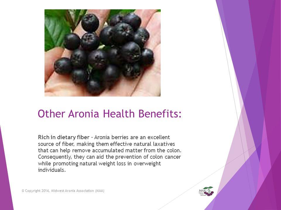 Other Aronia Health Benefits:
