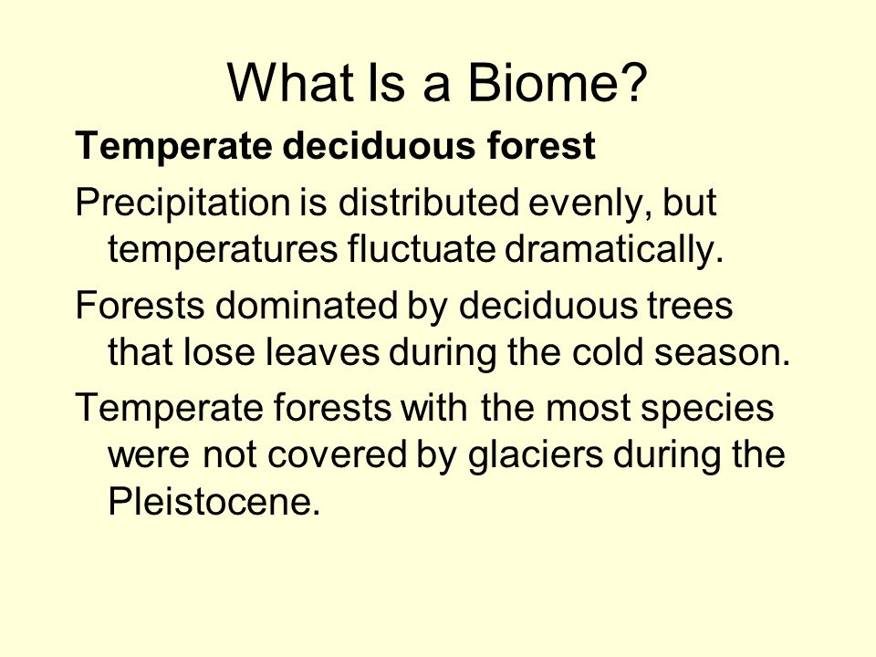 What Is a Biome Temperate deciduous forest