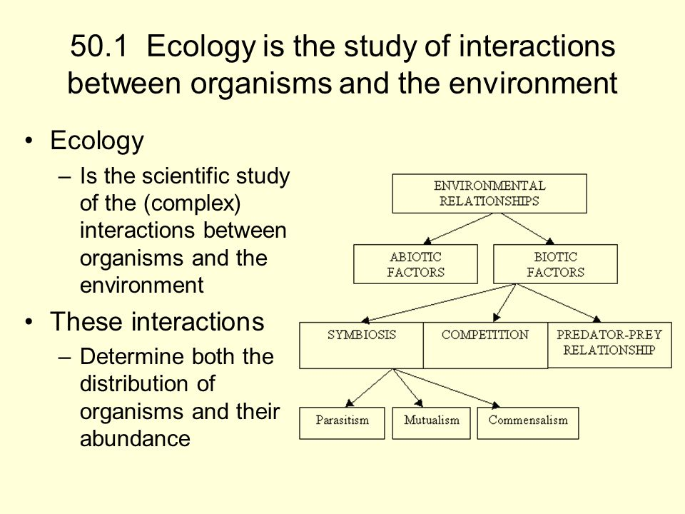50.1 Ecology is the study of interactions between organisms and the environment