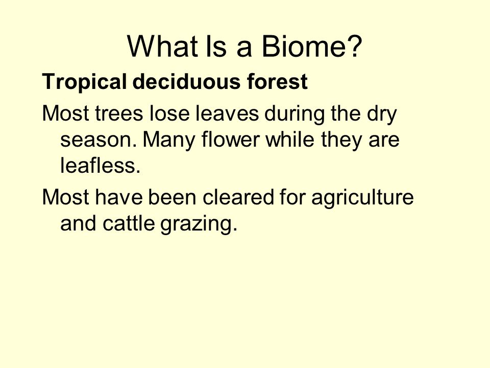 What Is a Biome Tropical deciduous forest