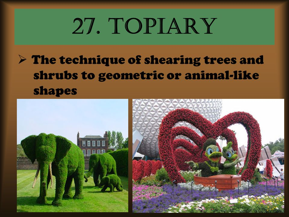 27. topiary The technique of shearing trees and