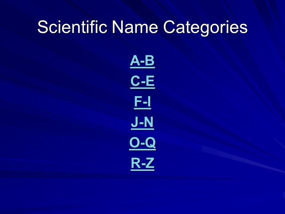Scientific Name Categories