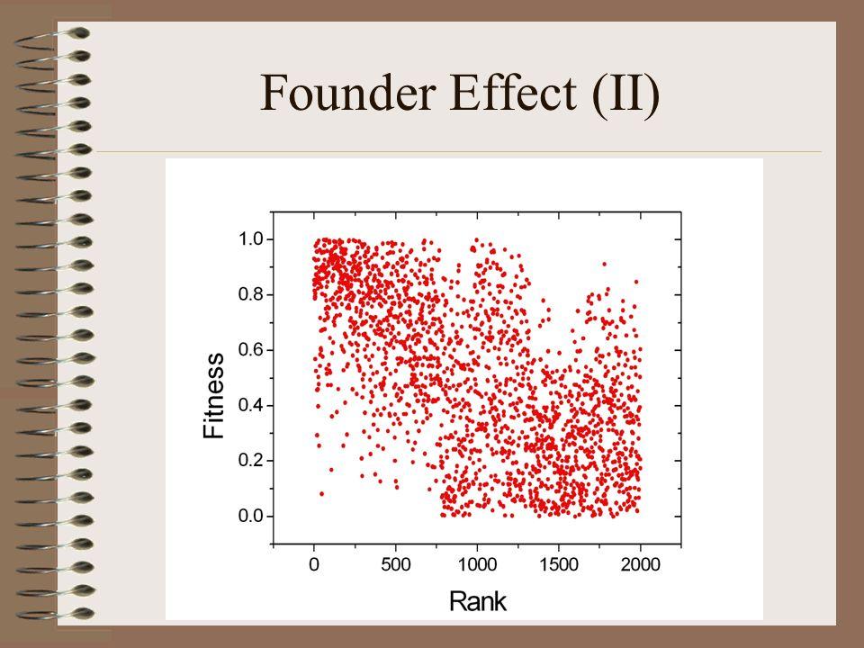 Founder Effect (II)