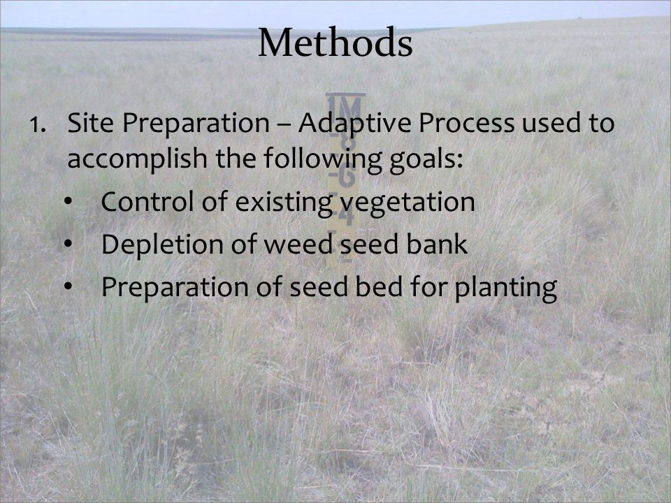 Methods Site Preparation – Adaptive Process used to accomplish the following goals: Control of existing vegetation.