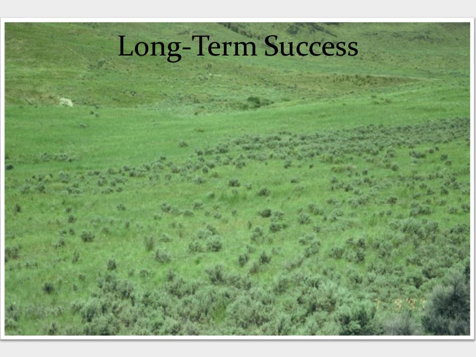 Long-Term Success