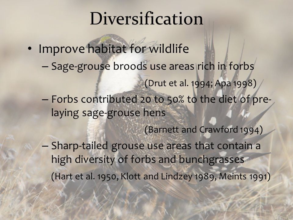Diversification Improve habitat for wildlife