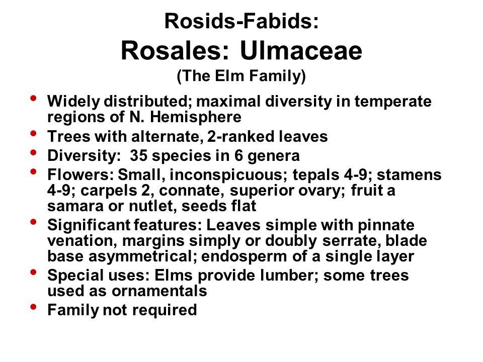 Rosids-Fabids: Rosales: Ulmaceae (The Elm Family)