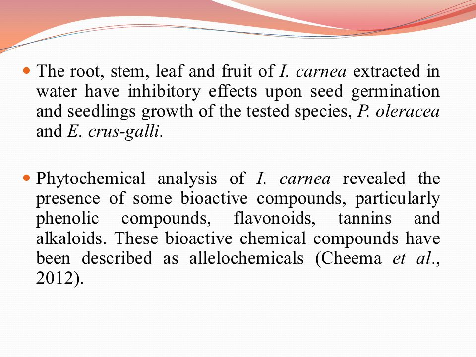 The root, stem, leaf and fruit of I