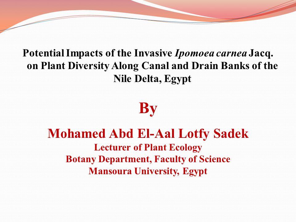 By Mohamed Abd El-Aal Lotfy Sadek