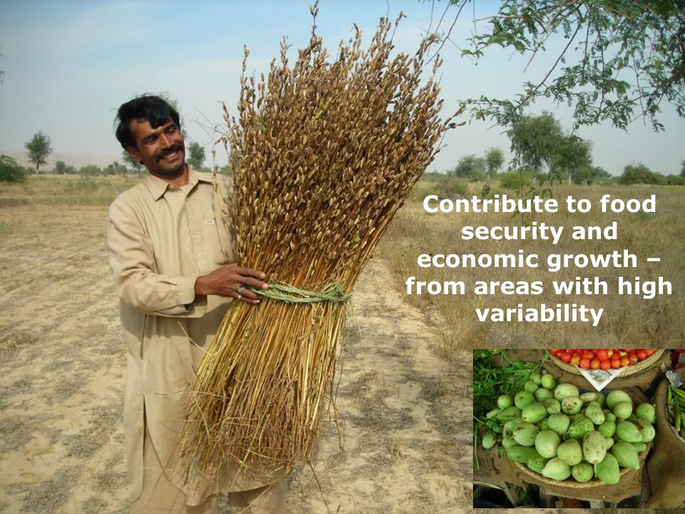 Contribute to food security and economic growth – from areas with high variability