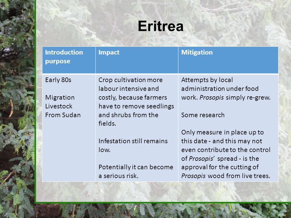 Eritrea Introduction purpose Impact Mitigation Early 80s Migration