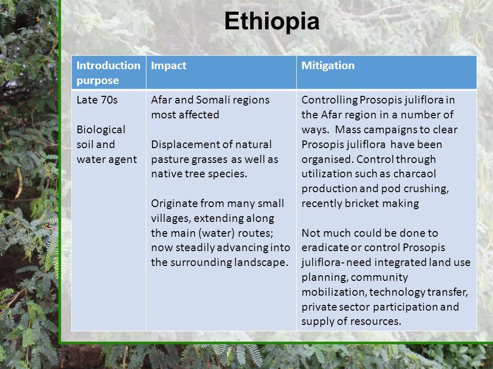 Ethiopia Introduction purpose Impact Mitigation Late 70s