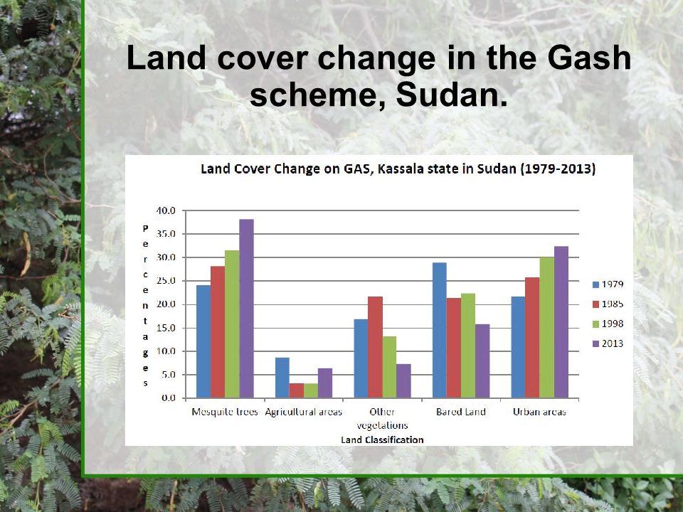 Land cover change in the Gash scheme, Sudan.