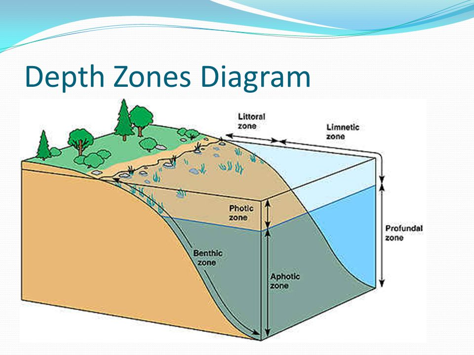 Depth Zones Diagram