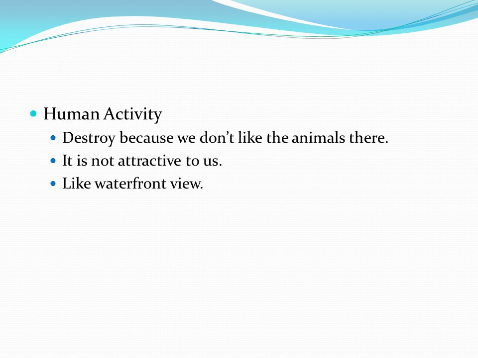 Human Activity Destroy because we don't like the animals there.