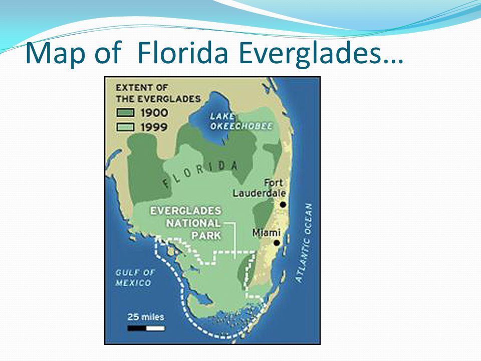 Map of Florida Everglades…