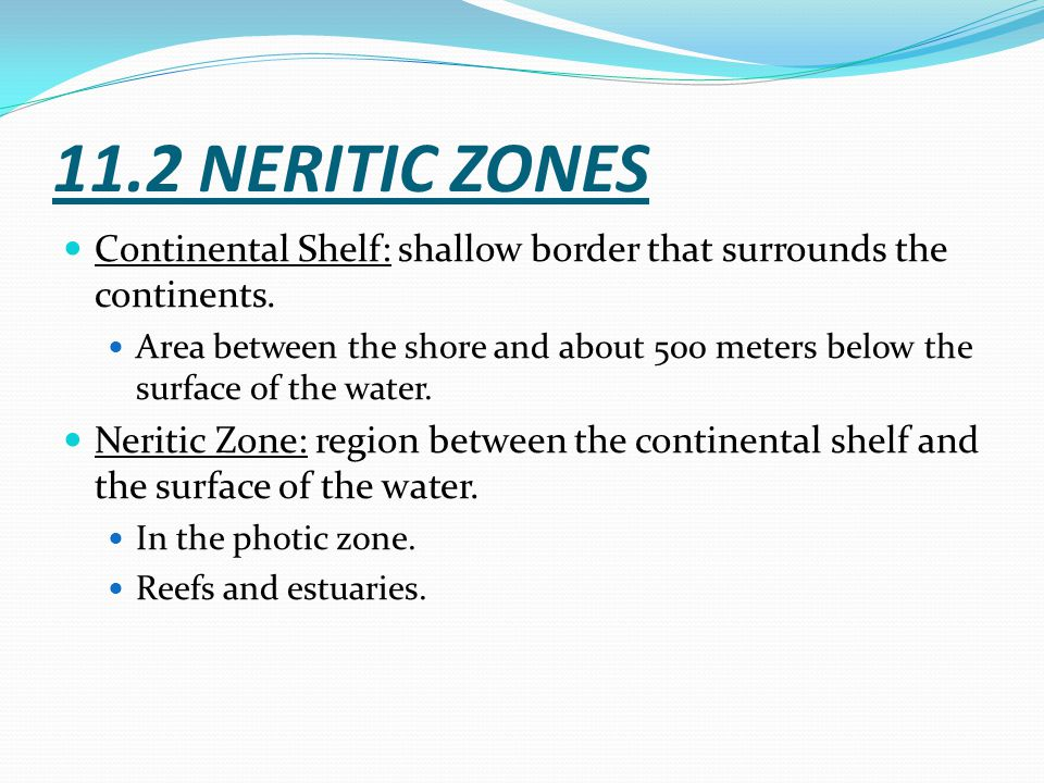 11.2 NERITIC ZONES Continental Shelf: shallow border that surrounds the continents.