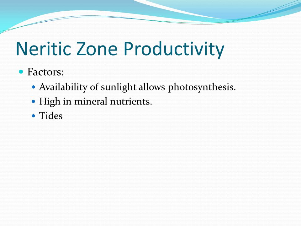 Neritic Zone Productivity